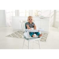 fisher-price-healthy-care-deluxe-booster-seat-baby-product-spreadr-hidden-yocompo-com_612_1024x1024